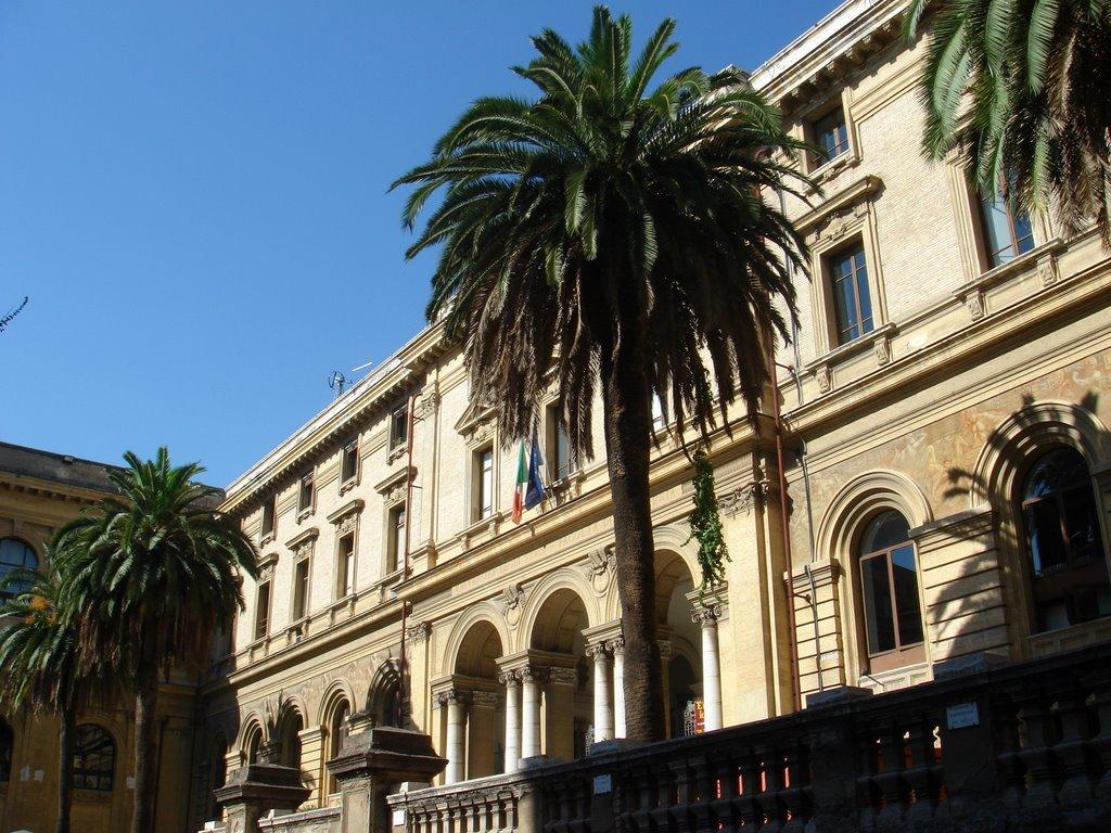 Universitatea din Roma