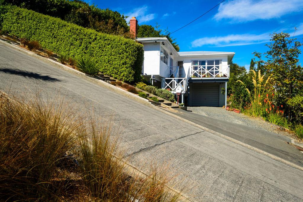 Baldwin street New Zeeland