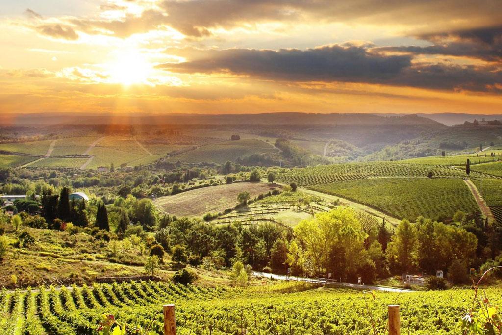 Chianti Italia wines