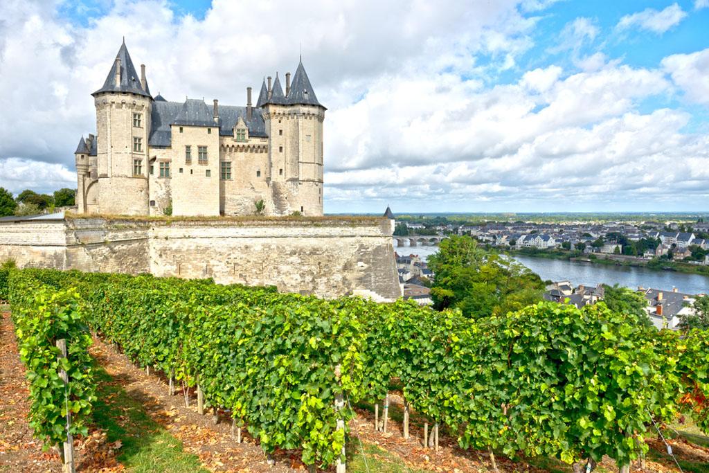 Loire Valley Franta wines
