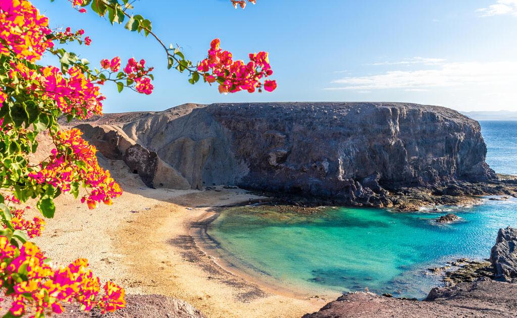 Vacanta Gran Canaria